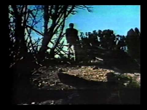 Nightmare In The Sun 1965 Full Movie