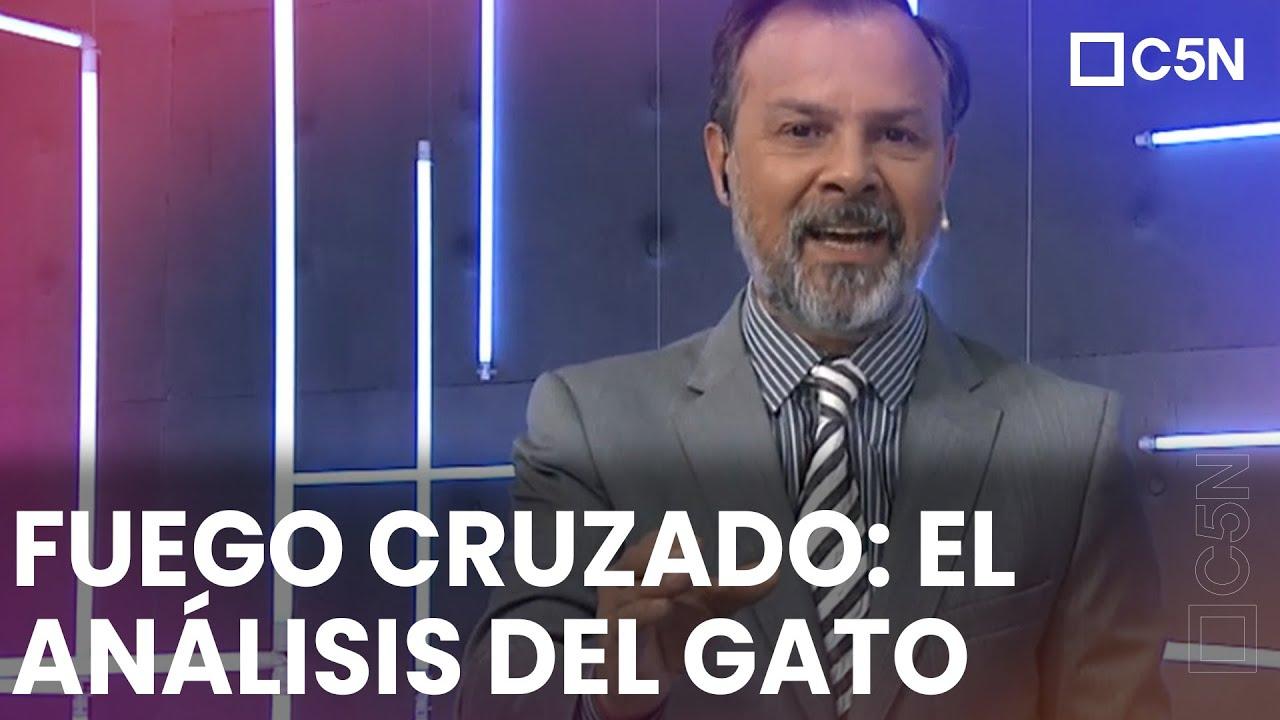 Download FUEGO CRUZADO EN EL GOBIERNO: EL ANALISIS DEL GATO SYLVESTRE
