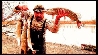 """Рыбалка. """"ВСПОМНИТЬ ВСЁ"""" Вся Рыбалка 2020 года (28 Рыбалок в 1 Видео) Донки, Фидер, Хищник на Живца."""