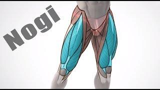 Jak poprawić nogi ? Wykłady | Patenty Działają