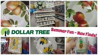DOLLAR TREE | NEW