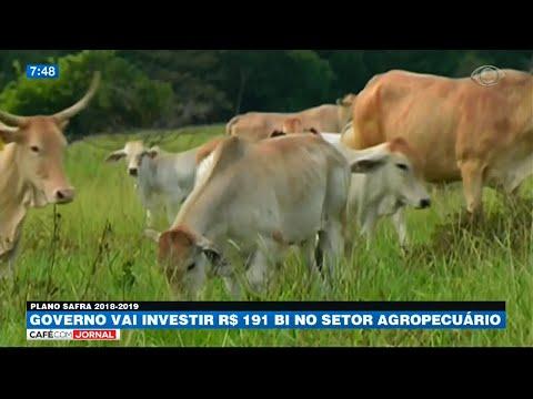 Governo Vai Investir R$ 191 Bi No Setor Agropecuário