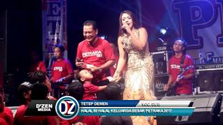 Download lagu Tetep Demen New Pallapa Petraka 2017 Devi Aldiva MP3