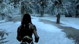 The Elder Scrolls V: Skyrim 9-5-2016 (2)