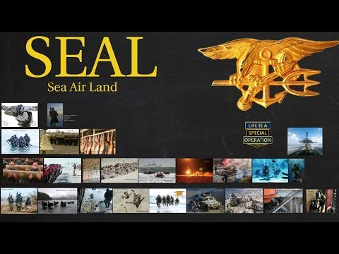 Navy SEALs Explained - What Is A Sea Air Land?