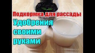 Чем подкармливать рассаду / Органические удобрения / Как сделать удобрения своими руками