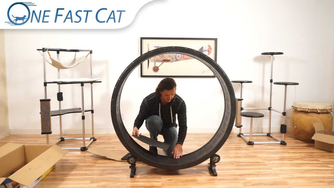 Cat Wheel Assembly - Keyed Parts - YouTube