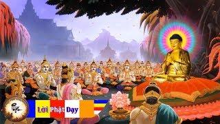 16 ĐIỀM CHIÊM BAO ĐÚNG SỰ THẬT - Lời Phật dạy giải mã những giấc mơ kỳ lạ