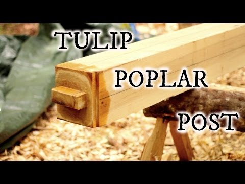 Our timberframe cabin part VII: Tulip Poplar Post