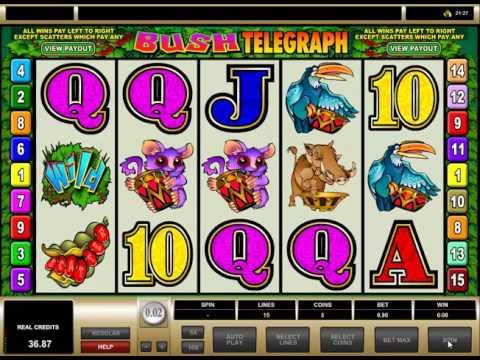 Video Slot - Bush Telegraph - Scatter Game - Bonus Game