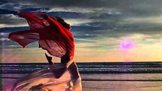 Delerium ft Sarah Mclachlan Silence (Tiesto Remix)