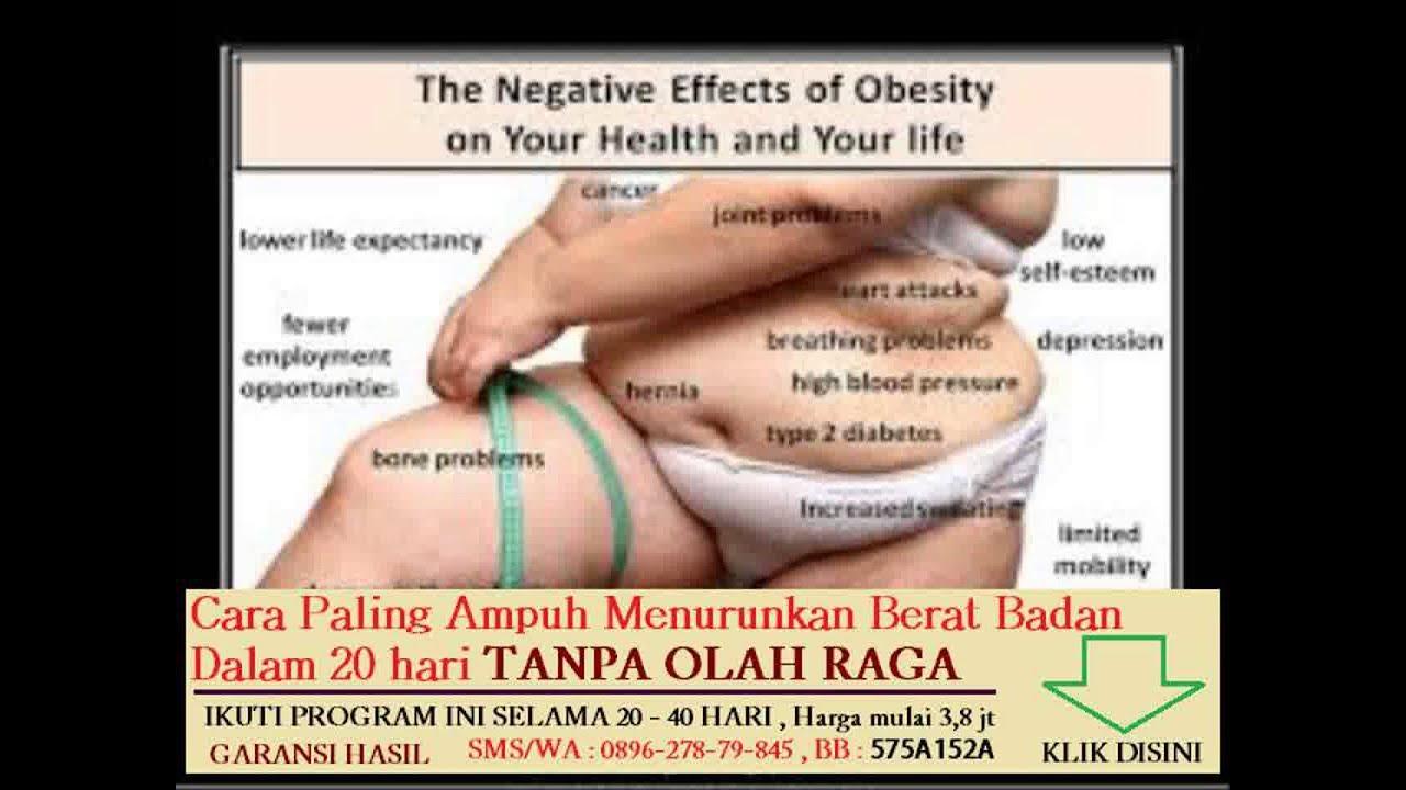 √ Lemak Tak Jenuh TUNGGAL: Pengertian, Makanan Manfaat & Efek