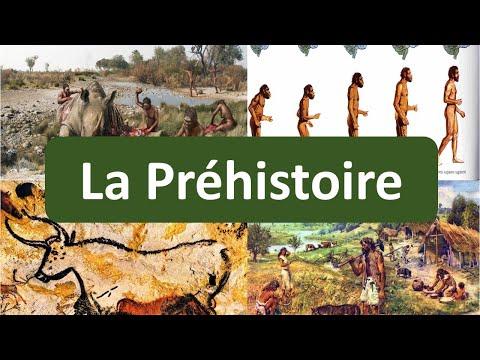 Super P02 : La frise historique - la Préhistoire - YouTube HY81