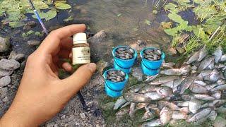 Вся рыба дуреет от этова запаха Клюёт на каждом забросе