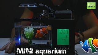 Настольный USB мини аквариум – органайзер