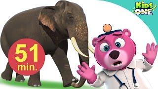 Video हाथी मेरा साथी आया | Hathi Mera Sathi Aaya | Hindi Children Rhymes | 51 Min Compilation download MP3, 3GP, MP4, WEBM, AVI, FLV Agustus 2017