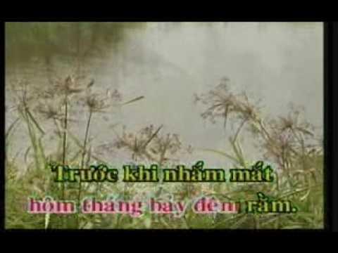 Chiec Ao Ba Ba — Kim Tu Long