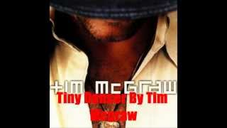 Watch Tim McGraw Tiny Dancer video