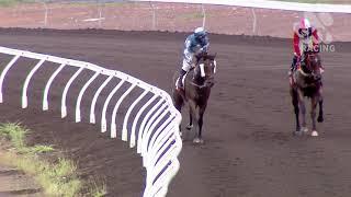 Vidéo de la course PMU PRIX GREAT NORTHERN HANDICAP