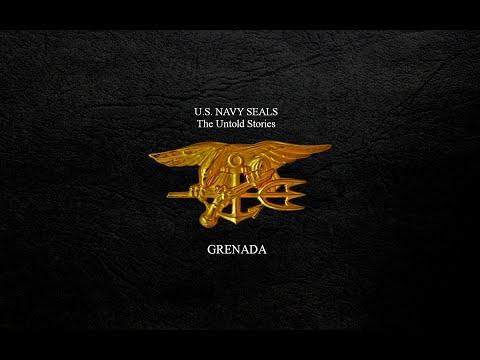 Navy Seals : Untold Stories - 1999 - cover