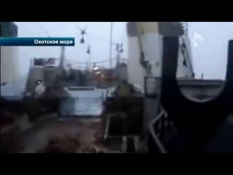 Капитан затонувшего в Охотском море судна не выходил на связь с командой