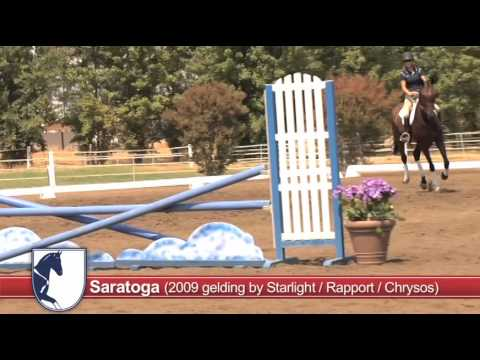 Saratoga PSS Auction Video