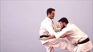 Renzoku Waza - Goju Ryu Karate