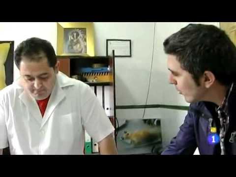Patatas Fritas San Nicasio en Comando Actualidad TVE1