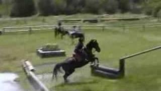 Horsey Vids