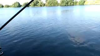 Река Москва район Жуковский
