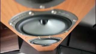 Bass i love you on Monitor Audio