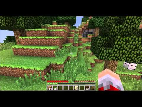 Minecraft with The Lone Gamer #1