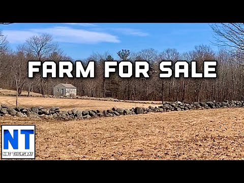 Farm For Sale In NH 120 Acres Stone Walls Livestock & Furniture
