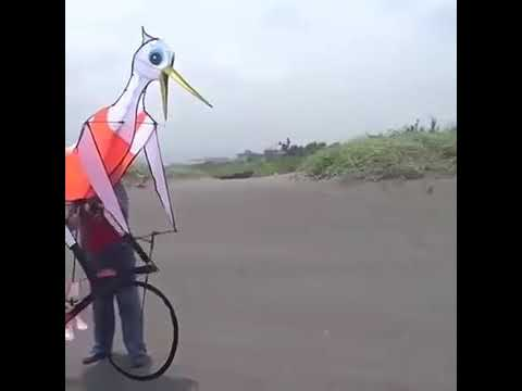 Udi udi jaaye cycle kite