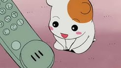 oruchuban ebichu episodes 1-2 english subs