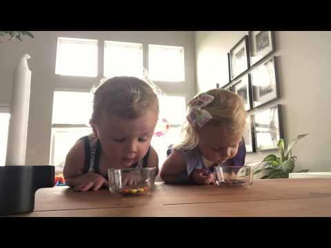 Irish Twins take on the toddler challenge #toddlerchallenge