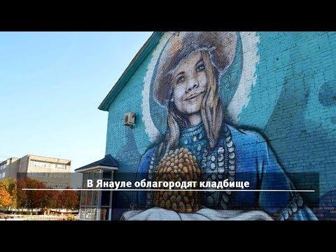 UTV. Новости севера Башкирии за 1 февраля (Нефтекамск, Дюртюли, Янаул, Татышлы)