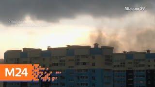 """""""Климат-контроль"""": какая погода ожидает москвичей в конце июня - Москва 24"""
