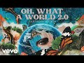 Kacey Musgraves - Oh, What a World 2.0 (Earth Day Edition / Audio)