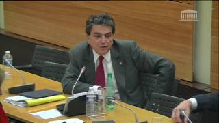 Pierre Lellouche - Audition Michel Cadot sur la réforme du statut de Paris