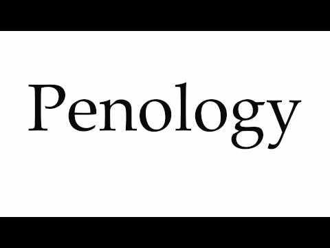 Criminology penology and pdf