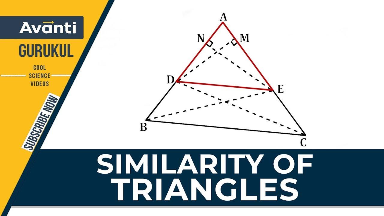 Similarity of Triangles | Triangles | Class 10 Mathematics
