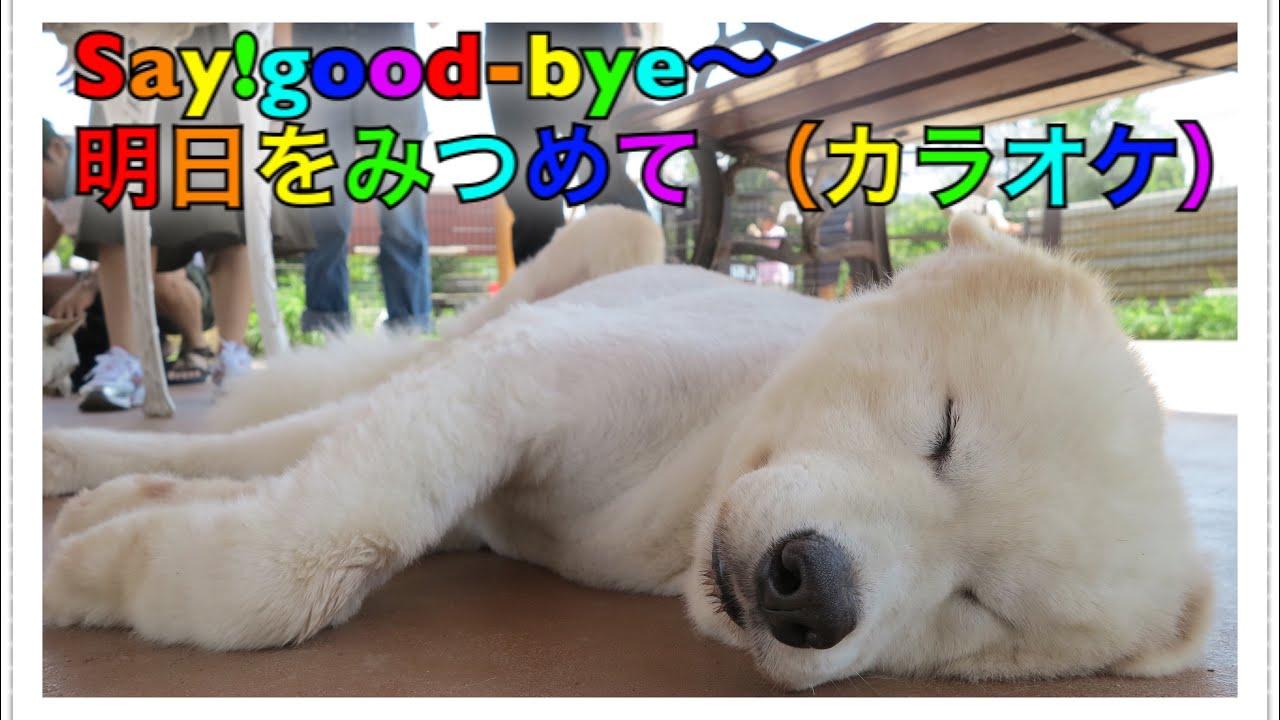 おかあさん と いっしょ say good bye 歌詞