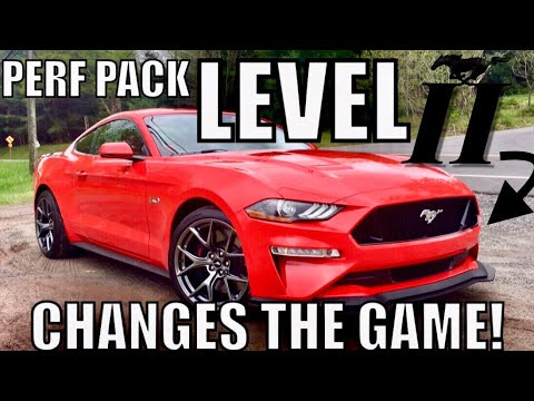 Here's Why the 2019 Performance Pack Level 2 is the BEST MUSTANG GT...EVER!
