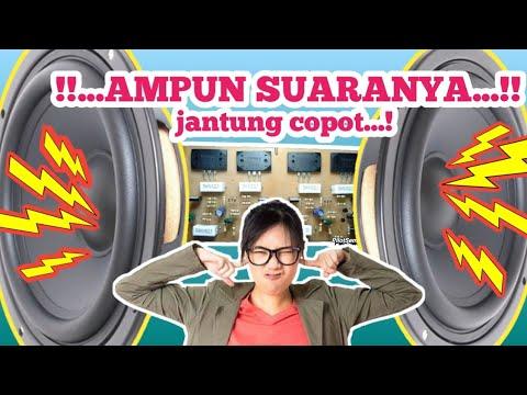 Assemble A 200w X 2 Power Amplifier