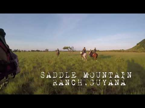 Horse Riding in Guyana Saddle Mountain Ranch
