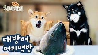 Big Fish Eating with my doggo