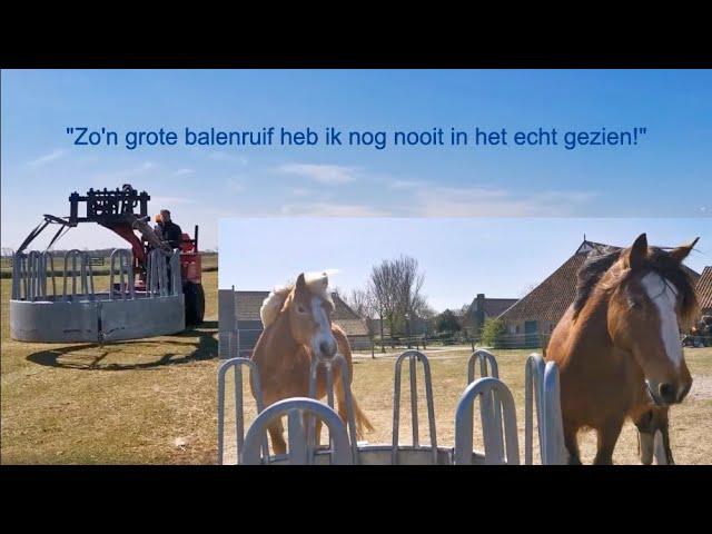 Kunnen onze paarden praten?!