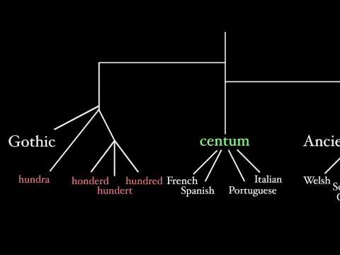 Latin and Its Indo-European Language Family