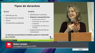Video presentación: Anne M. Larson de CIFOR.